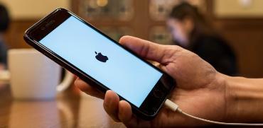 apple / צילום: שאטרסטוק
