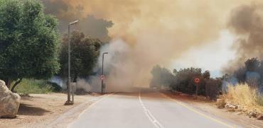 שריפות ענק בכפר אוריה, גיזו, ויער הנשיא