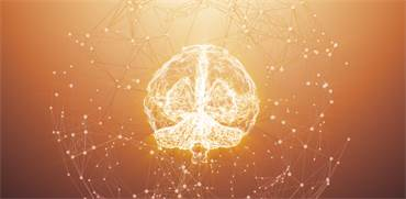 מחקרים חדשים מנסים לפצח: מה קורה במוח של אדם מאמין?