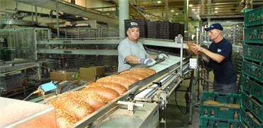 מאפיית לחם/צילום:איל יצהר