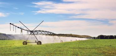מערכת השקיה/ צילום: Shutterstock א.ס.א.פ קריאטיב