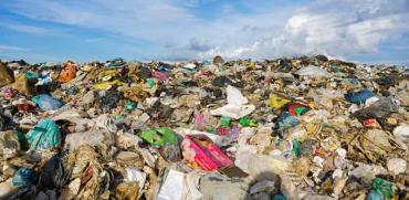 פסולת פלסטיק בחופים  / צילום : Shutterstock א.ס.א.פ קריאייטיב