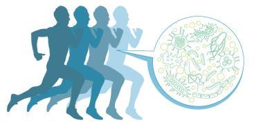 החיידקים שגורמים לנו לרוץ / איור: Shutterstock/א.ס.א.פ קרייטיב