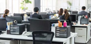 פחות נשים עם כישורים גבוהים פונות להייטק / צילום:  Shutterstock א.ס.א.פ קריאייטיב
