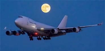 מטוס של קאל / צילום: קובי בן נביא