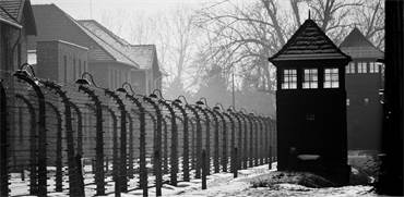 עמדת שמירה באושוויץ / צילום: Szymon Kaczmarczyk, שאטרסטוק