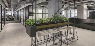משרדי IBI / תכנון ועיצוב: מאיה אסף אדריכלים / צילום: עוזי פורת