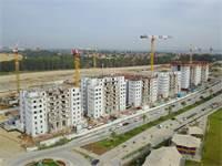 עד 3 קומות בחודש ובכמה פרויקטים במקביל / צילום: דוד אסייג