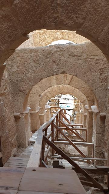 """חיושים מפתעים בהרודיון - הכניסה המפוארת של הורדוס להר / צילום: יח""""צ"""