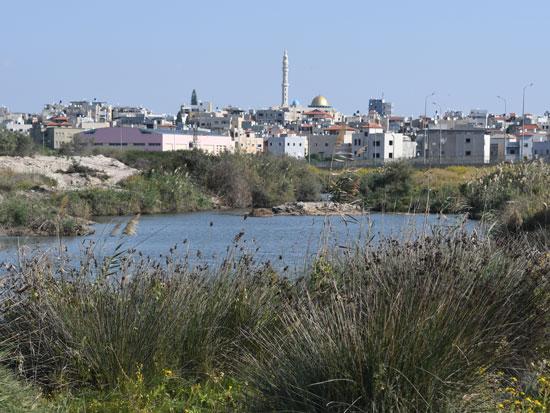 הכפר ג'סר א־זרקא / צילום: יותם יעקבסון