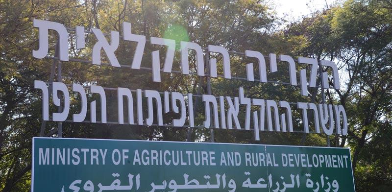 משרד החקלאות / צילום: תמר מצפי