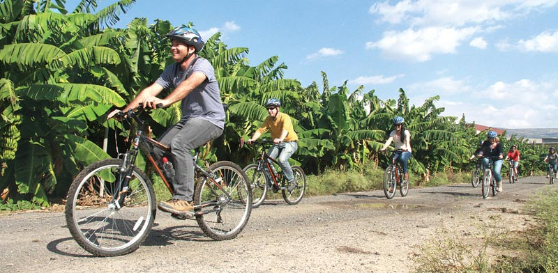 טיול אופניים במטעי הבננות של עין גב / צילום:גליה גוטמן