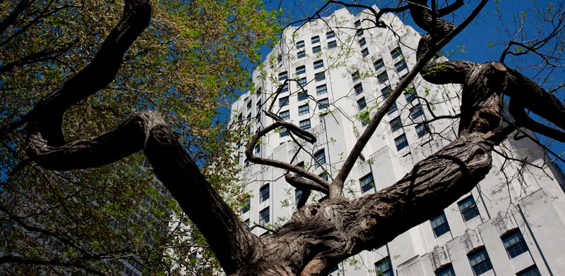 הבניין בשדרות מדיסון 11 במנהטן / צילום: בלומברג