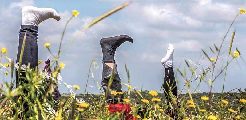 יוגה בטבע /צילום: אורלי גנוסר