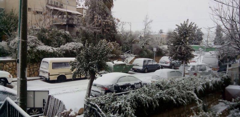 סערה - שלג בצפת / צילום: טליה בן לולו