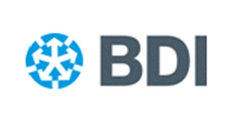 BDI לוגו / צילום: יחצ