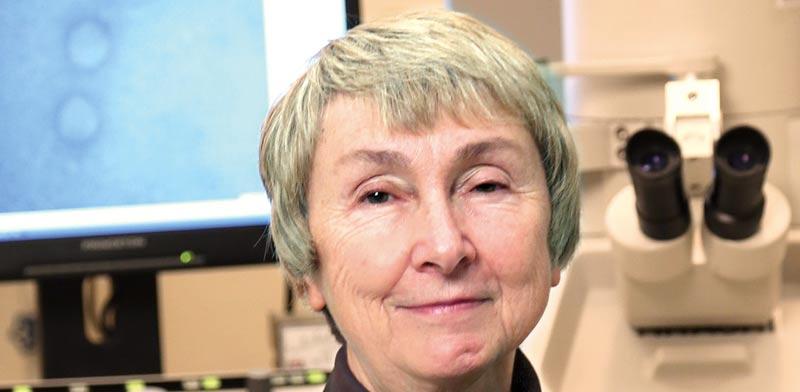 פרופסור לינדה סאיף / צילוםיחצ