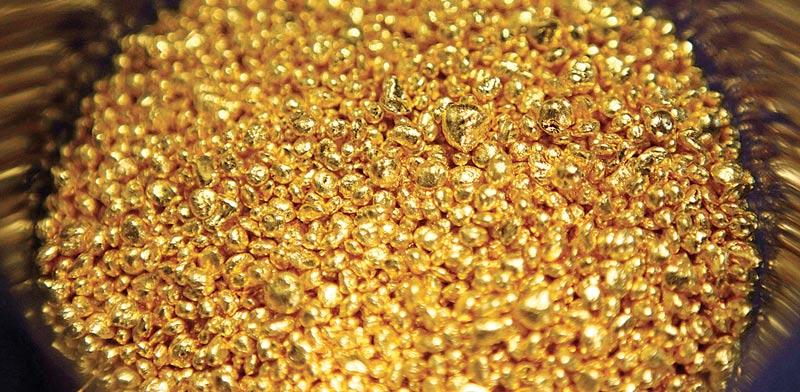 זהב / צילום: רויטרס