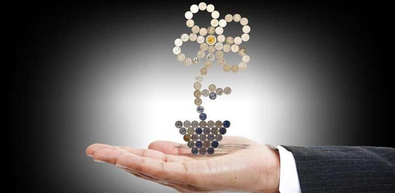 השקעה צמיחה רווח / קרדיט: שאטרסטוק