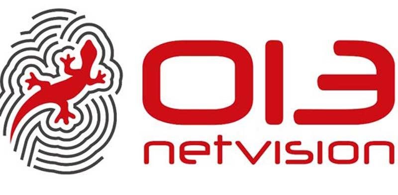 נטוויז`ן 013 לוגו / צילום: יחצ
