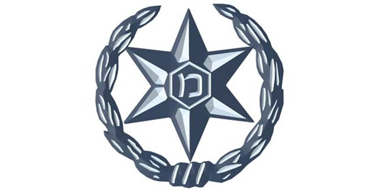 לוגו משטרת ישראל / צילום: יחצ
