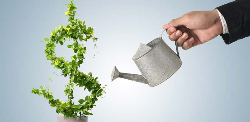 רווח, תשואה/ קרדיט: שאטרסטוק