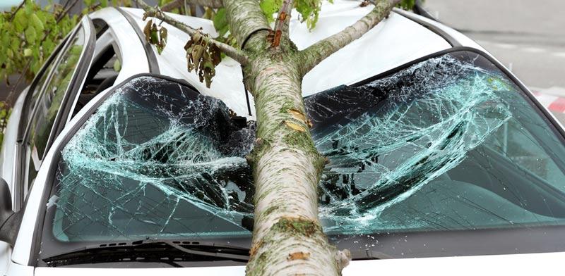 נזקים כתוצאה מפגעי מזג האוויר/ צילום:  Shutterstock/ א.ס.א.פ קרייטיב