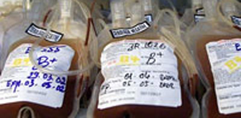תרומת דם/ צילום: רויטרס
