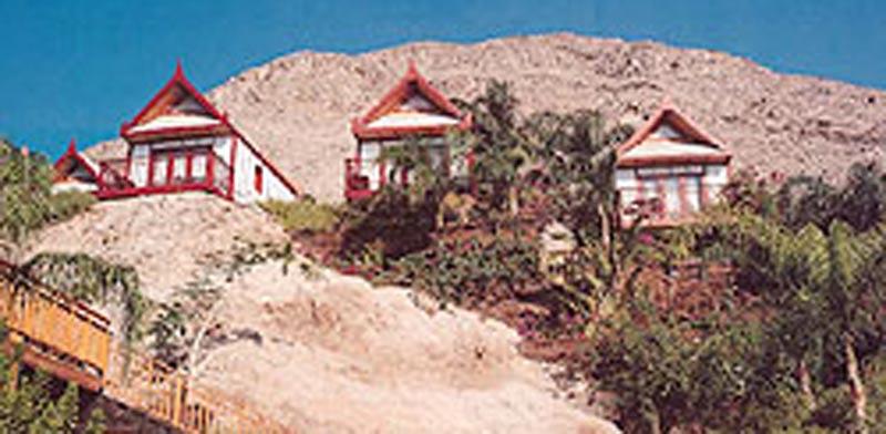 מלון אורכידאה / צילום: אתר החברה
