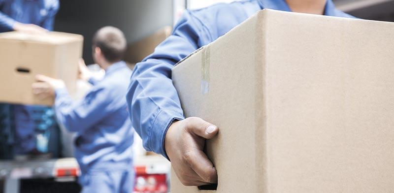 תאונת עבודה / צילום: Shutterstock/ א.ס.א.פ קרייטיב