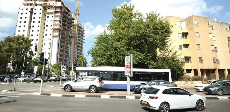 רחוב לוי אשכול בקרית אונו / צילום: איל יצהר