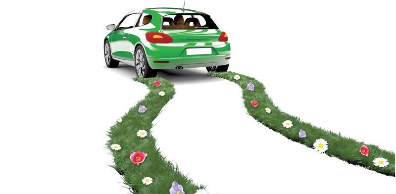 רכב ירוק / צילום:Shutterstock/ א.ס.א.פ קרייטיב
