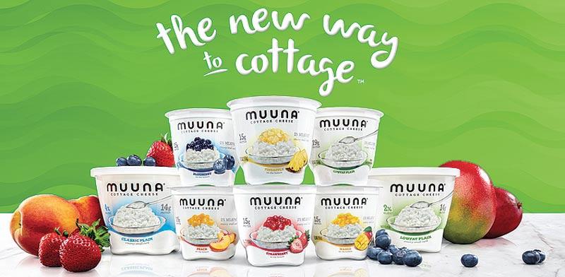 Tnuva Muuna cottage cheese Photo: PR