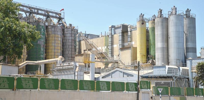 מפעל באשדוד. בישראל רק 5% מהמפעלים חוברו לגז טבעי, לעומת 28% במדינות OECD / צילום: תמר מצפי