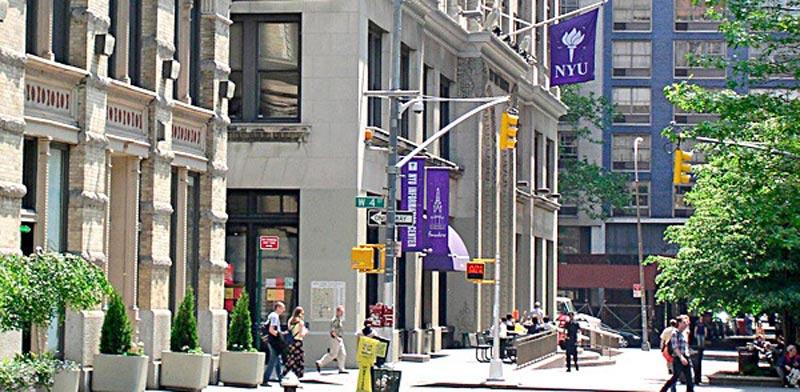 הקמפוסים של ניו יורק / צילום: יחצ