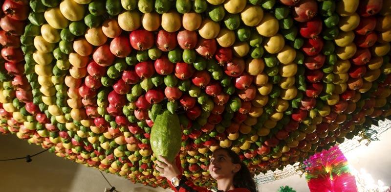 פירות / צילום: רויטרס