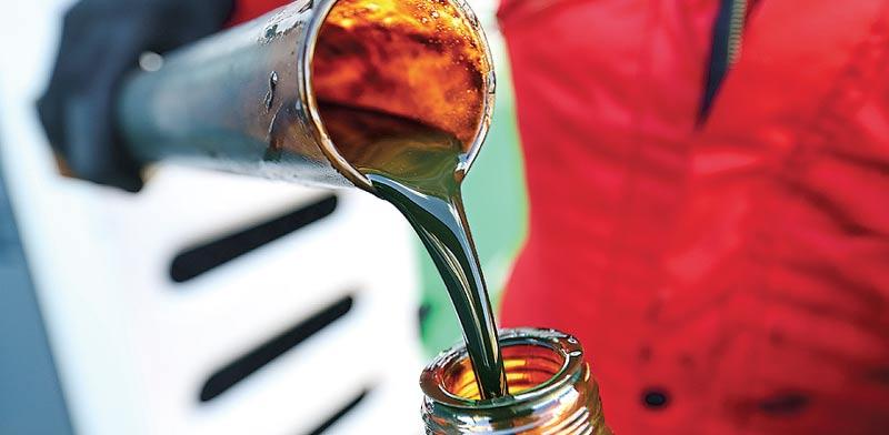 מוזגים נפט / צילום: בלומברג