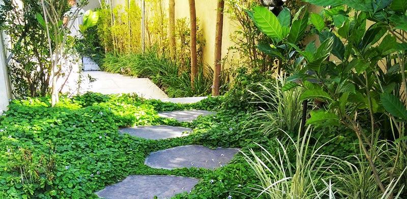 לקראת חילופי העונות: 9 טיפים להכנת הגינה לקיץ