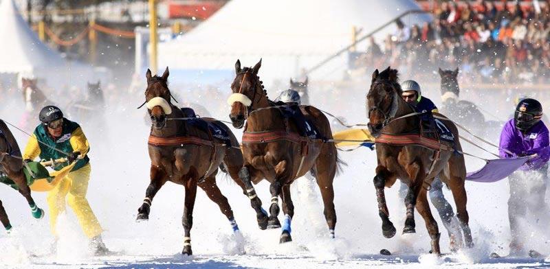 סקי בסנט מוריץ ומרוצי סוסים/ צילום:  Shutterstock/ א.ס.א.פ קרייטיב