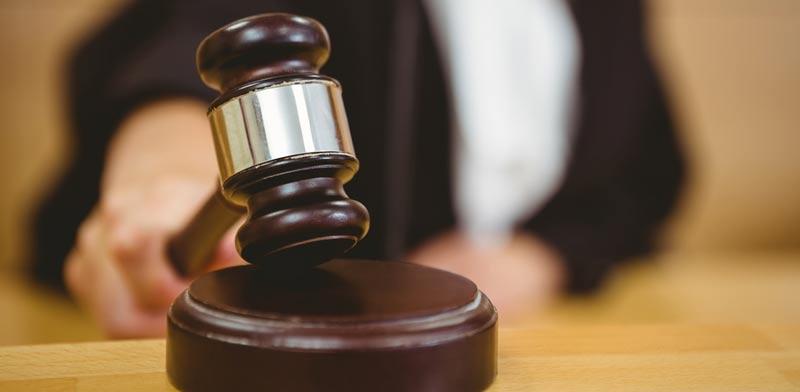 פסק דין תקדימי /צילום:  Shutterstock א.ס.א.פ קרייטיב