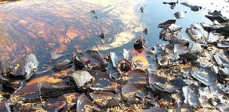 דליפת הנפט בשמורת הטבע עברונה, דצמבר 2014 / צילום: רשות הטבע והגנים