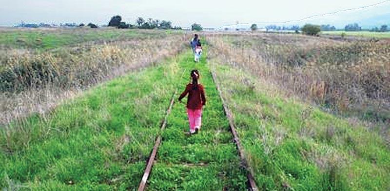 טרק על מסילת הרכבת ליד נווה אור / צילום: אשחר בצר