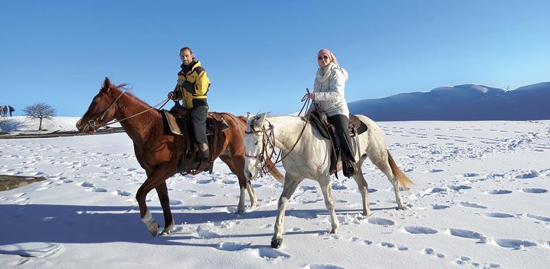 עין זיוון ומרום גולן, חוות הסוסים, בקתות האירוח / צילום: שפי מור