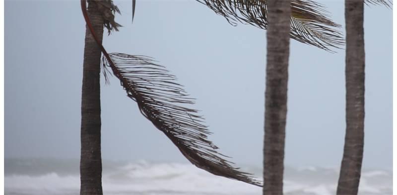 """הוריקן """"אירמה"""" מכה בפלורידה רוייטרס"""