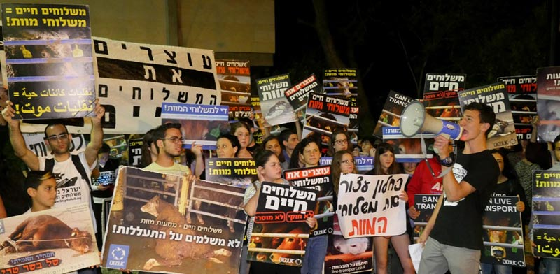מפגינים מול ביתו של השר כחלון / צילום: הילה ספאק