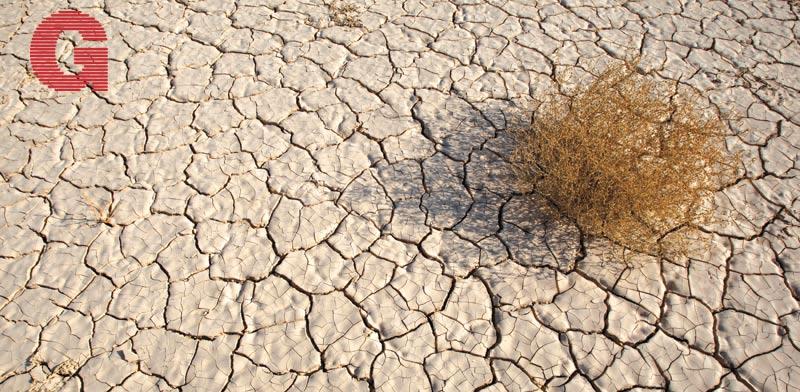 משבר המים / צילום: רויטרס Baz Ratner