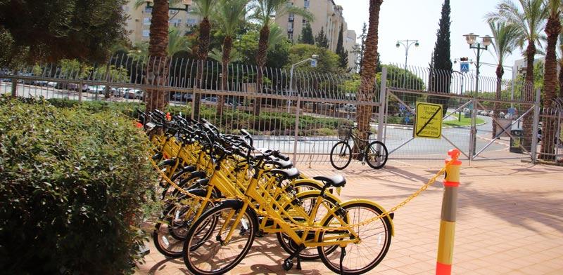 אופניים / צילום: דוברות בר-אילן