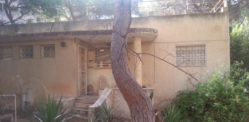 בכמה נמכר בית בחיפה / צילום: פסח יעקב