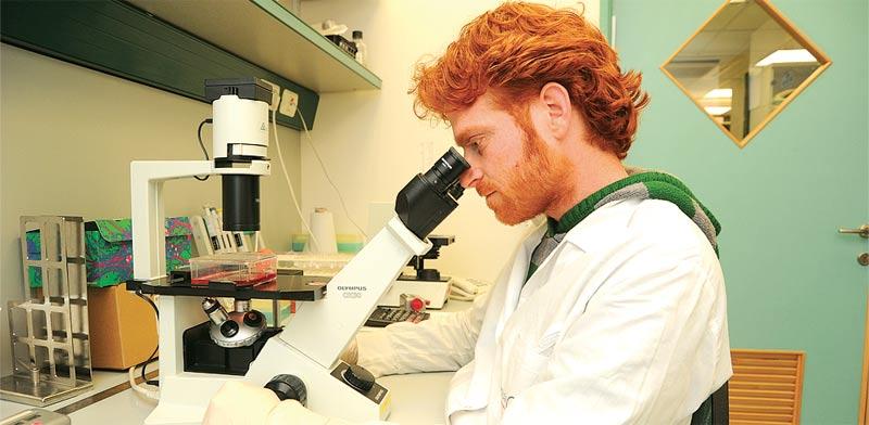 """מעבדה של חברת גמידה סל, מבין החזקותיה של כת""""ב / צילום: איל יצהר"""