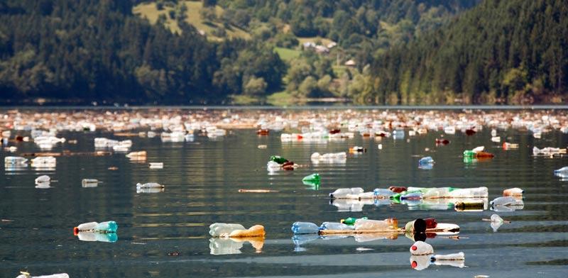 הטבע סובל תחת ערימות של פלסטיק / צילום: Shutterstock/ א.ס.א.פ קרייטיב